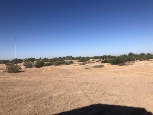 10915 S 206th Lane, Buckeye, AZ 85326 (MLS #5995368) :: Kortright Group - West USA Realty
