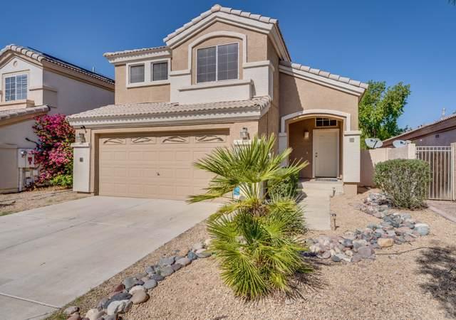 13606 W Desert Flower Drive, Goodyear, AZ 85395 (MLS #5995379) :: Devor Real Estate Associates