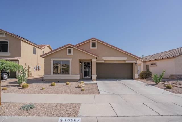 16067 W Moreland Street, Goodyear, AZ 85338 (MLS #5995459) :: Devor Real Estate Associates