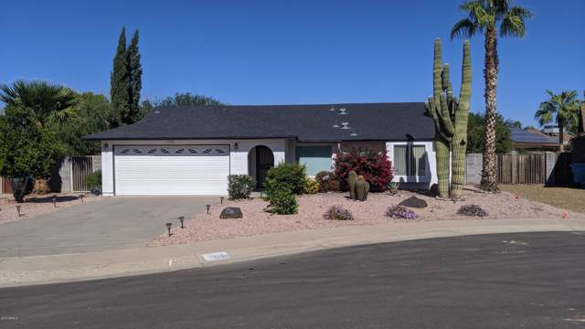 3038 E Libby Street, Phoenix, AZ 85032 (MLS #5995554) :: Cindy & Co at My Home Group
