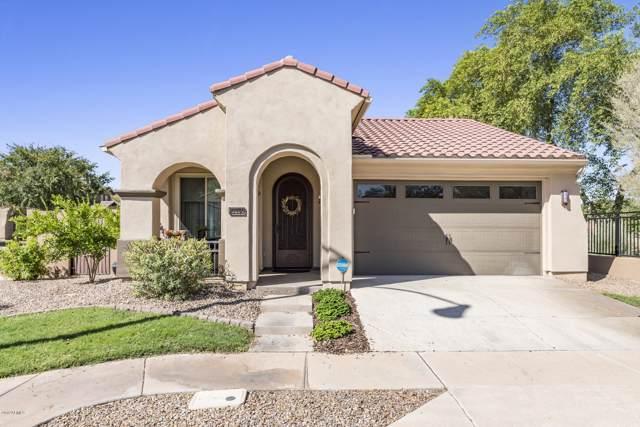 1272 S Ponderosa Drive, Gilbert, AZ 85296 (MLS #5995642) :: Relevate | Phoenix