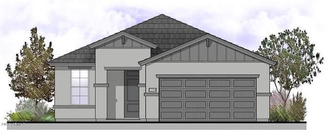 9185 N 98TH Avenue, Peoria, AZ 85345 (MLS #5995736) :: Devor Real Estate Associates