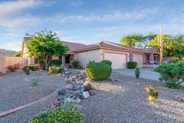 4704 S Louie Lamour Drive, Gold Canyon, AZ 85118 (MLS #5995829) :: The Property Partners at eXp Realty