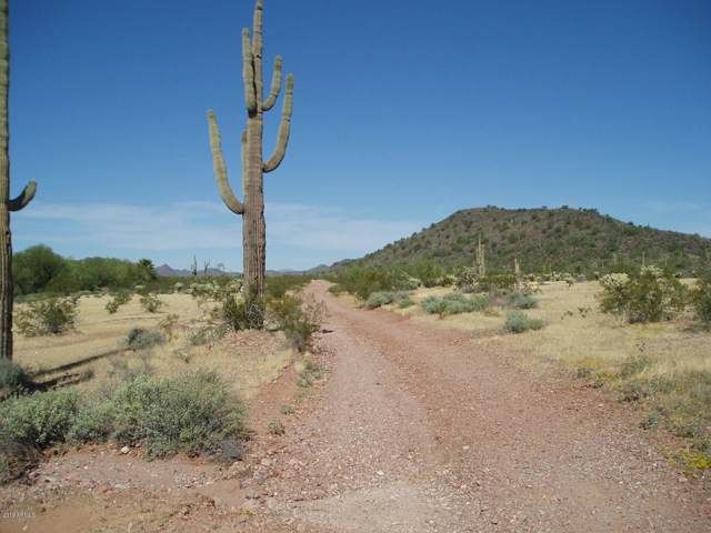 34102 N 299th Avenue, Unincorporated County, AZ 85361 (MLS #5995978) :: Howe Realty