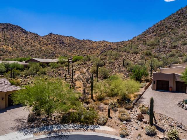 14346 E Corrine Drive, Scottsdale, AZ 85259 (MLS #5996028) :: Sheli Stoddart Team | M.A.Z. Realty Professionals