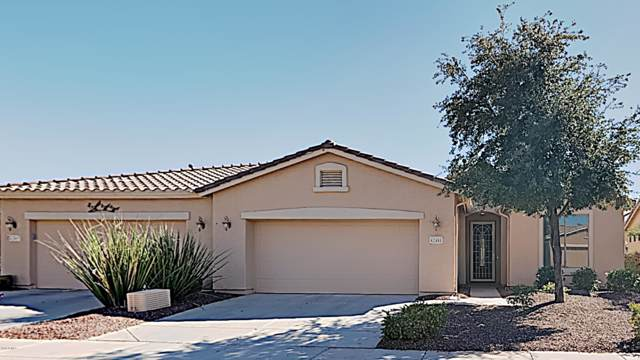 42481 W Candyland Place, Maricopa, AZ 85138 (MLS #5996050) :: Revelation Real Estate