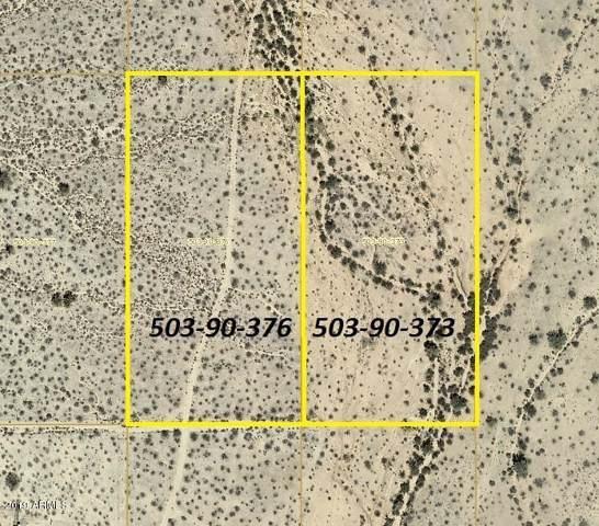 291XX W Dixileta Drive, Wittmann, AZ 85361 (MLS #5996091) :: The W Group