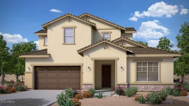 21092 E Via Del Sol, Queen Creek, AZ 85142 (MLS #5996094) :: The Property Partners at eXp Realty
