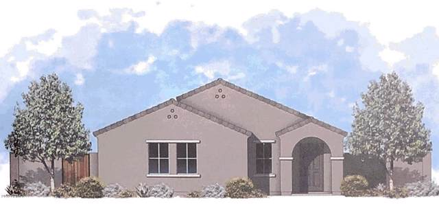 1779 E Elegante Drive, Casa Grande, AZ 85122 (MLS #5996124) :: The Kenny Klaus Team