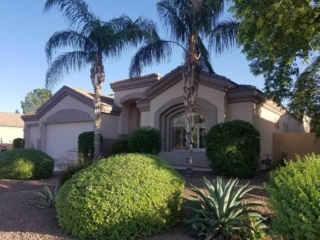 3473 E Cody Avenue, Gilbert, AZ 85234 (MLS #5996135) :: Revelation Real Estate