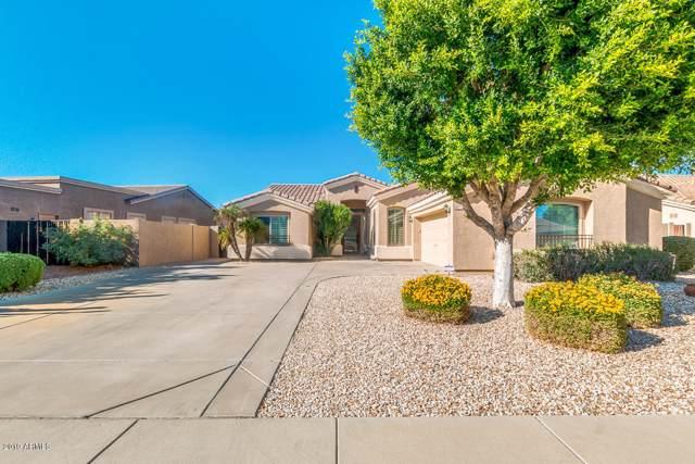 6772 W Abraham Lane, Glendale, AZ 85308 (MLS #5996468) :: Yost Realty Group at RE/MAX Casa Grande