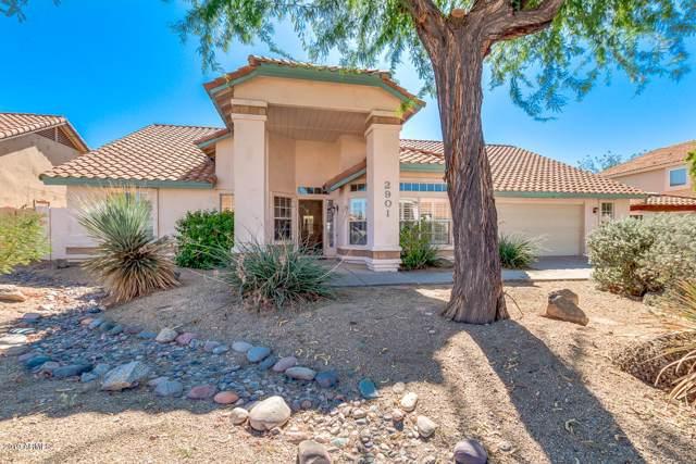 2901 E Mallory Street, Mesa, AZ 85213 (MLS #5996815) :: The Kenny Klaus Team