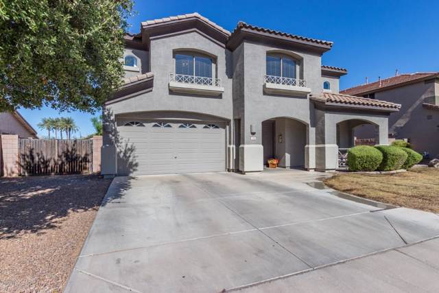 1342 E Jade Drive, Chandler, AZ 85286 (MLS #5997142) :: Keller Williams Realty Phoenix