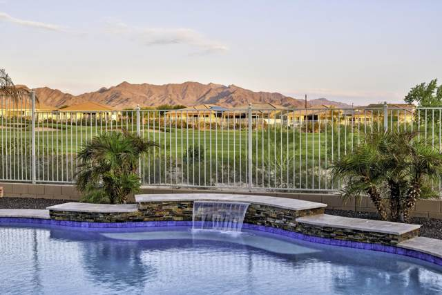 12045 S 183RD Drive, Goodyear, AZ 85338 (MLS #5997220) :: Nate Martinez Team