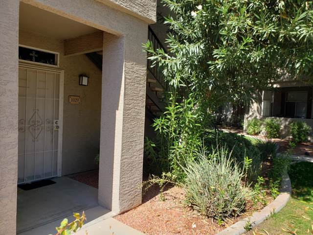 3830 E Lakewood Parkway #1029, Phoenix, AZ 85048 (MLS #5997378) :: Homehelper Consultants