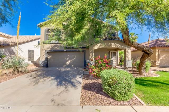 1844 E Carla Vista Drive, Gilbert, AZ 85295 (MLS #5997519) :: Revelation Real Estate