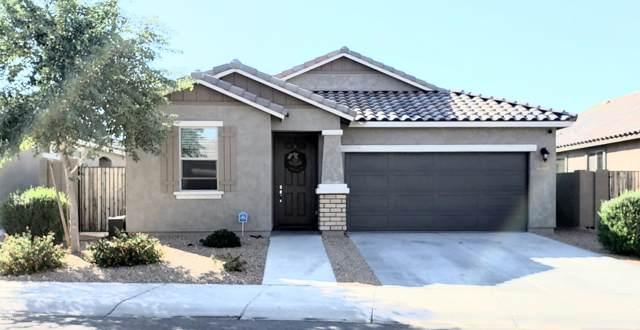 12053 W Hide Trail W, Peoria, AZ 85383 (MLS #5997702) :: The Kenny Klaus Team