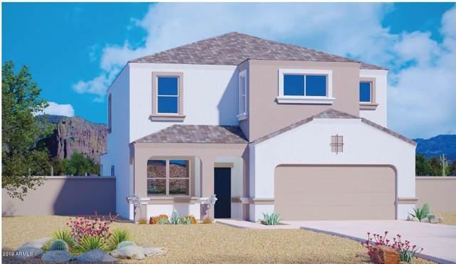 3732 N 310TH Lane, Buckeye, AZ 85396 (MLS #5998667) :: Conway Real Estate