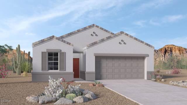 3551 N 309TH Drive, Buckeye, AZ 85396 (MLS #5998669) :: Long Realty West Valley