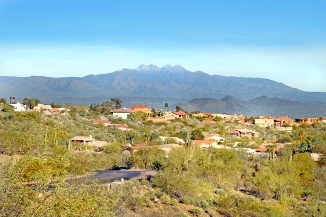 14623 E Prairie Dog Trail, Fountain Hills, AZ 85268 (MLS #5998738) :: My Home Group