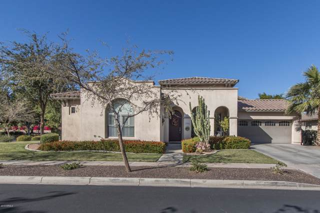 15154 W Alexandria Way, Surprise, AZ 85379 (MLS #5998806) :: Revelation Real Estate