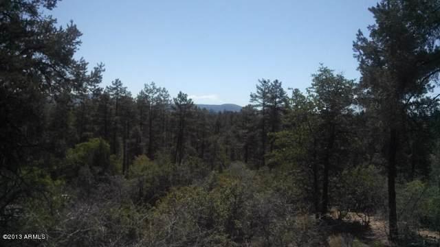 2602 E Feather Plume Lane, Payson, AZ 85541 (MLS #5998985) :: Arizona Home Group