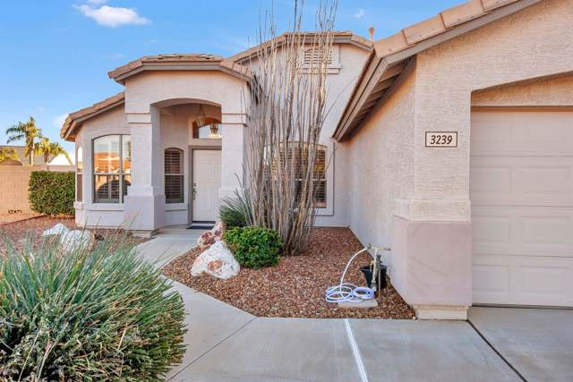 3239 W Casitas Del Rio Drive, Phoenix, AZ 85027 (MLS #5999317) :: The Laughton Team