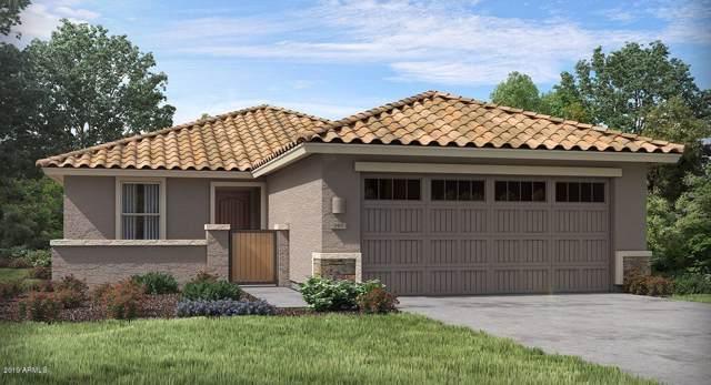 45401 W Norris Road, Maricopa, AZ 85139 (MLS #5999436) :: The Kenny Klaus Team