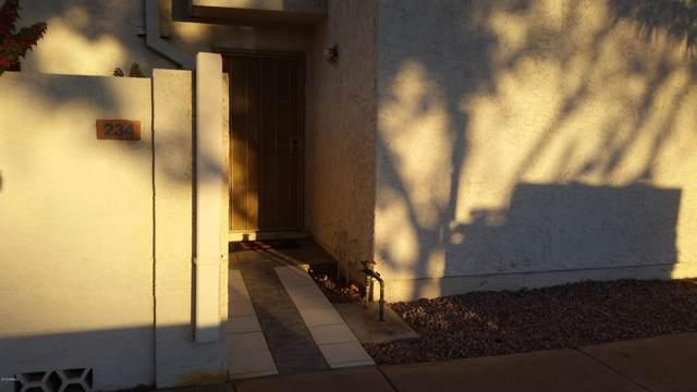 1342 W Emerald Avenue #234, Mesa, AZ 85202 (MLS #5999529) :: Brett Tanner Home Selling Team