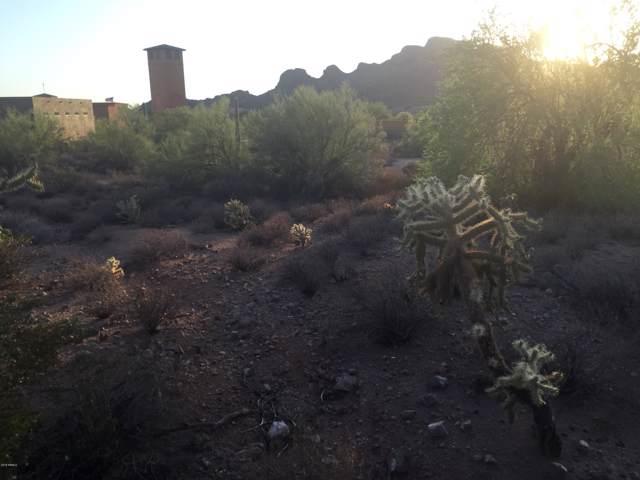 5256 S Via De Rico Way, Gold Canyon, AZ 85118 (#5999670) :: Luxury Group - Realty Executives Arizona Properties