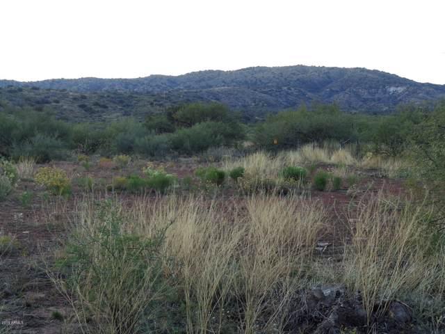 31 S Tatum Trail, Payson, AZ 85541 (MLS #6000344) :: neXGen Real Estate