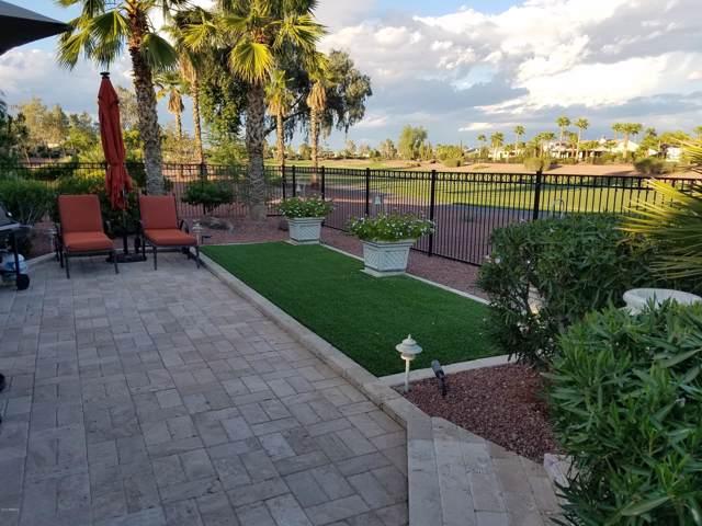 22915 N Las Positas Drive, Sun City West, AZ 85375 (MLS #6000881) :: The Kenny Klaus Team