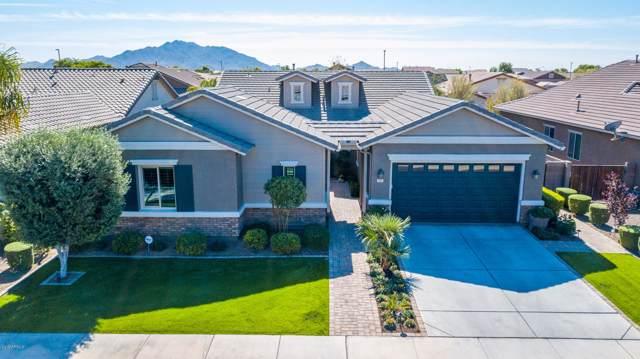 2483 E Plum Street, Gilbert, AZ 85298 (MLS #6001210) :: Revelation Real Estate