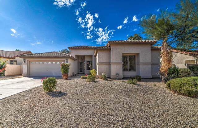 734 S Roanoke Street, Gilbert, AZ 85296 (MLS #6001227) :: Scott Gaertner Group