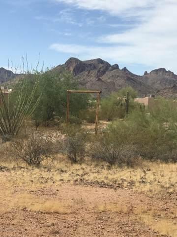 Apx 1400 E Whiteley Street, Apache Junction, AZ 85119 (MLS #6001293) :: The Kenny Klaus Team