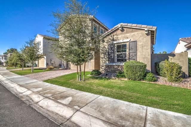 922 W Yellowstone Way, Chandler, AZ 85248 (MLS #6001322) :: The Daniel Montez Real Estate Group
