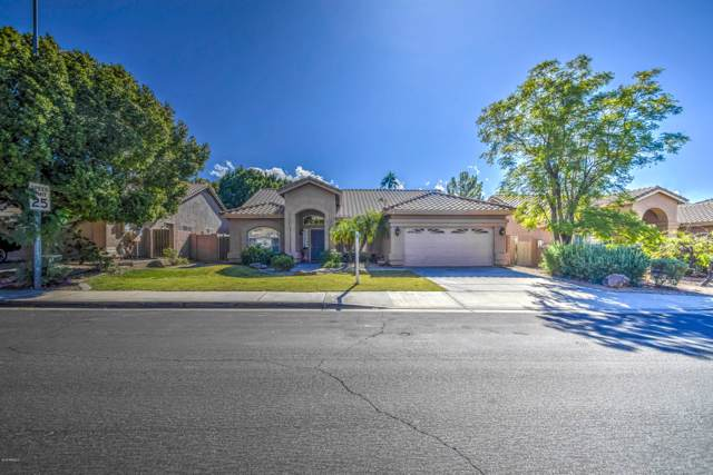 6045 E Riverdale Street, Mesa, AZ 85215 (MLS #6001436) :: Openshaw Real Estate Group in partnership with The Jesse Herfel Real Estate Group