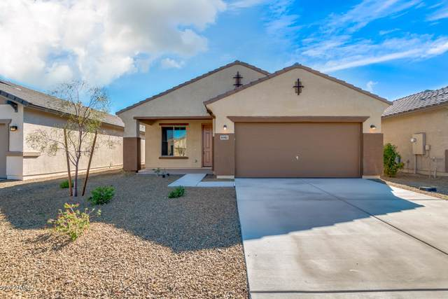 8981 W Townley Avenue, Peoria, AZ 85345 (MLS #6001499) :: Occasio Realty