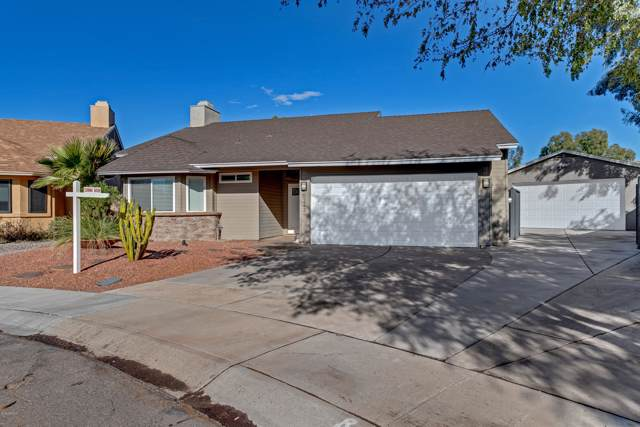 6242 E Betty Elyse Lane, Scottsdale, AZ 85254 (MLS #6001504) :: The Laughton Team
