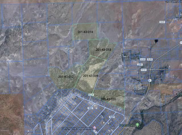 0000 Big Six Ranches, Concho, AZ 85924 (MLS #6001531) :: Devor Real Estate Associates