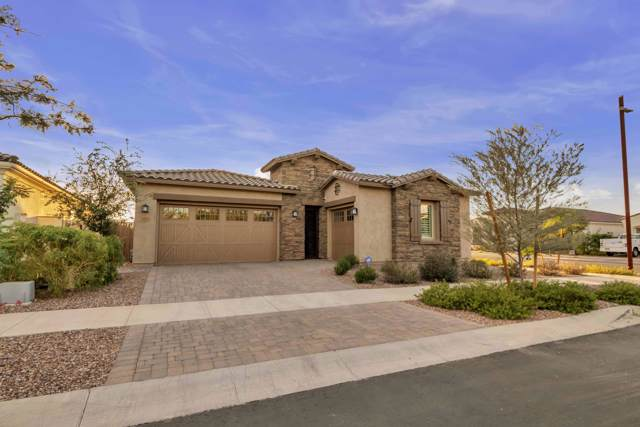 4818 S Curie Way, Mesa, AZ 85212 (MLS #6001537) :: Occasio Realty