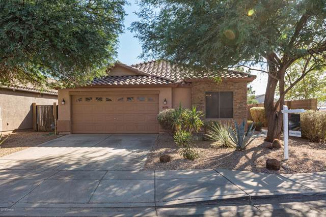 46179 W Starlight Drive, Maricopa, AZ 85139 (MLS #6001592) :: The AZ Performance PLUS+ Team