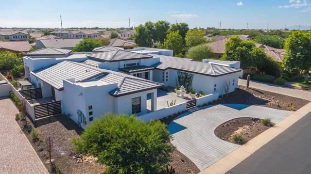 2835 E Carob Drive, Chandler, AZ 85286 (MLS #6001817) :: Keller Williams Realty Phoenix