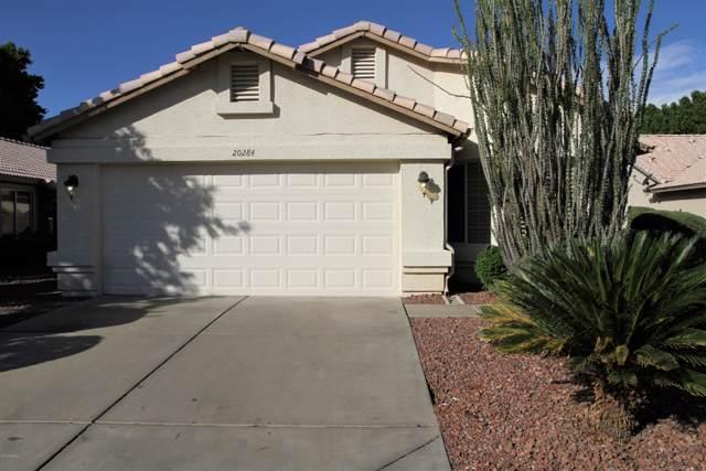 20284 N 52ND Drive, Glendale, AZ 85308 (MLS #6001858) :: Long Realty West Valley