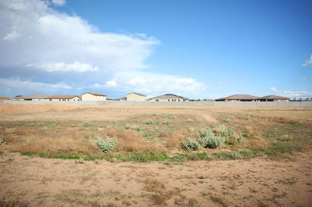 16006 W Cheryl Court, Waddell, AZ 85355 (MLS #6001892) :: Revelation Real Estate