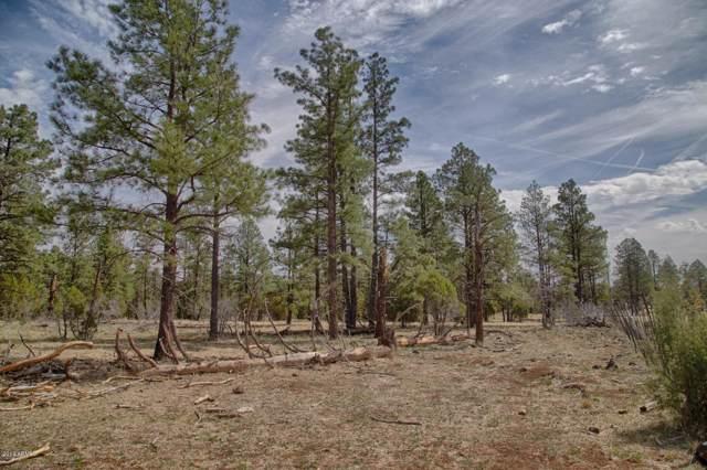 0 W Coyote Lane, Lakeside, AZ 85929 (MLS #6001957) :: Riddle Realty Group - Keller Williams Arizona Realty