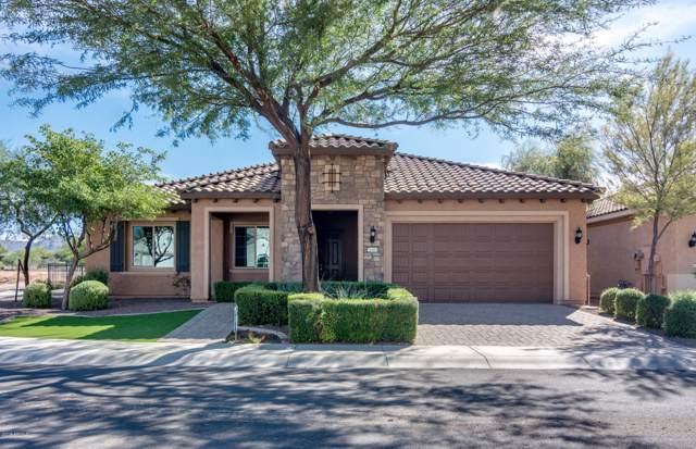 26401 W Sequoia Drive, Buckeye, AZ 85396 (MLS #6002057) :: Long Realty West Valley