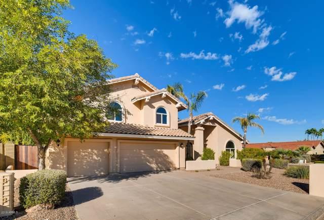 3740 E Cherokee Court, Phoenix, AZ 85044 (MLS #6002122) :: Dijkstra & Co.