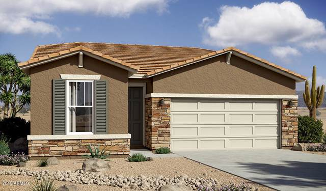 1071 S 175TH Drive, Goodyear, AZ 85338 (MLS #6002173) :: Nate Martinez Team