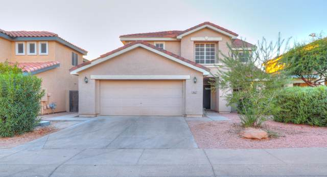 16622 S 28th Place, Phoenix, AZ 85048 (MLS #6002303) :: Yost Realty Group at RE/MAX Casa Grande